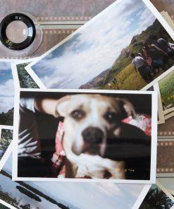 dlux photo film